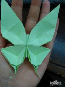 凤尾蝶折纸图解教程 手工凤尾蝶的折法步骤